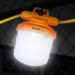 LED String Light - single at night